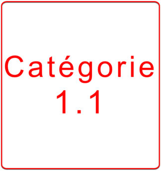 Catégorie 1.1