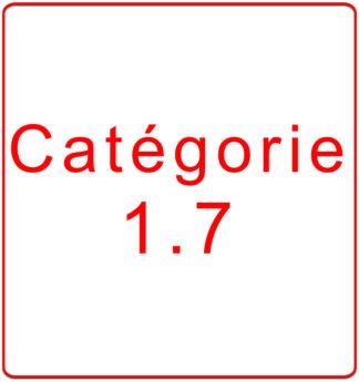 Catégorie 1.7