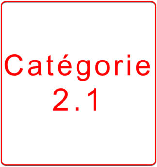 Catégorie 2.1